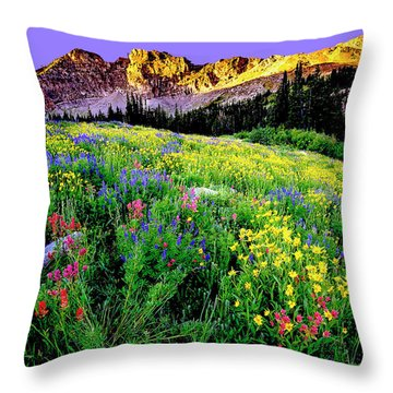 Albion Meadows Throw Pillow