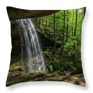 Alcorn Falls Throw Pillow by Ulrich Burkhalter