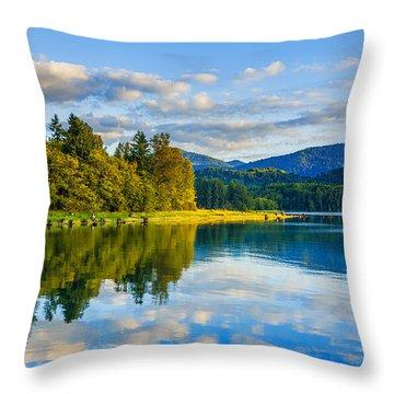 Alder Lake Reflection Throw Pillow