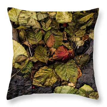 Alder Leaves Dan Creek 2015 Throw Pillow