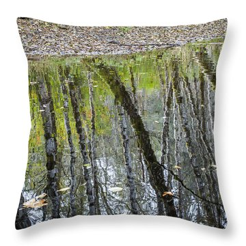 Alder Reflection Throw Pillow