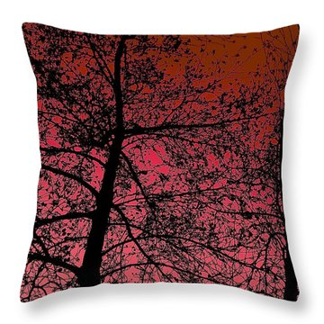 Alder Trees Against The Winter Sunrise Throw Pillow