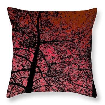 Alder Trees Against The Winter Sunrise Throw Pillow