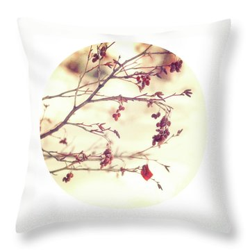 Alders Circle Throw Pillow