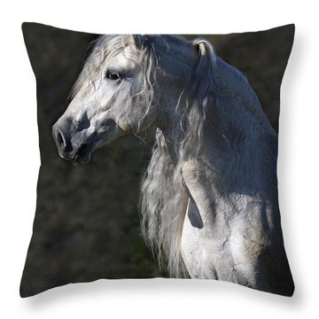 Alejandro Throw Pillow