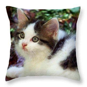 Alert Throw Pillow by Jai Johnson