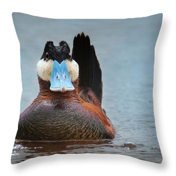 Alert Ruddy Throw Pillow