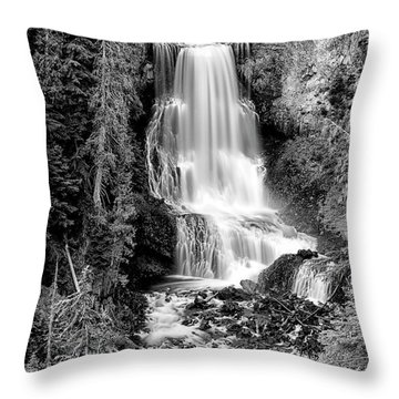 Throw Pillow featuring the photograph Alexander Falls - Bw 1 by Stephen Stookey