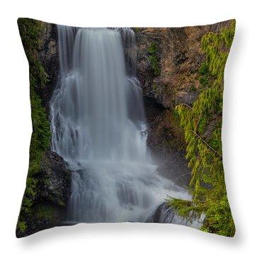Alexander Falls Throw Pillow