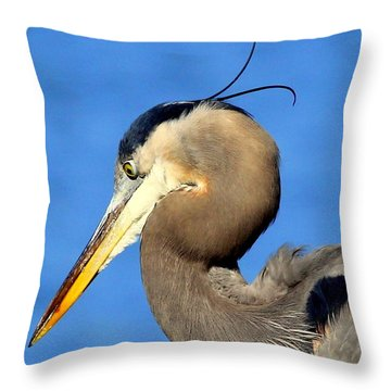 Alfalfa Throw Pillow