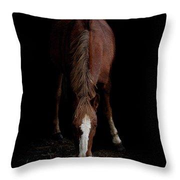 Alfresco Throw Pillow