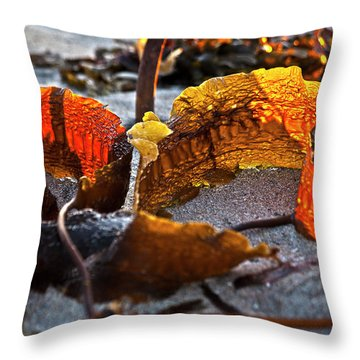 Algae At Low Tide Throw Pillow by Heiko Koehrer-Wagner