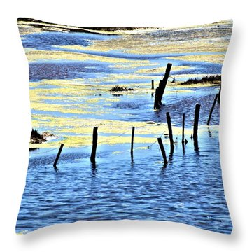 Throw Pillow featuring the photograph Algae Bloom by Bob Wall