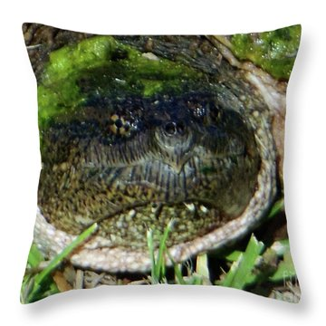 Algae Face Common Snapper Throw Pillow