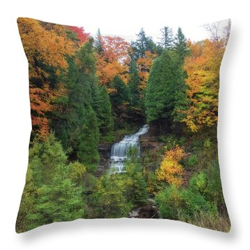 Throw Pillow featuring the photograph Alger Falls by Heather Kenward
