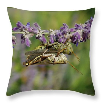 Alien Love Throw Pillow
