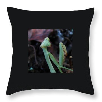 Alien Throw Pillow