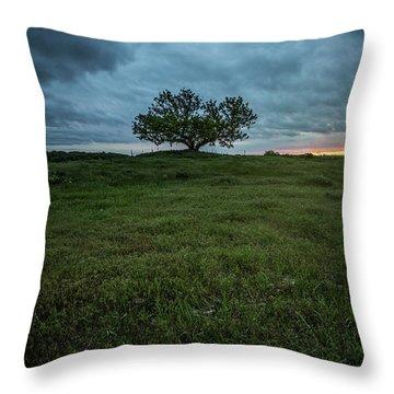 Alive Throw Pillow by Aaron J Groen