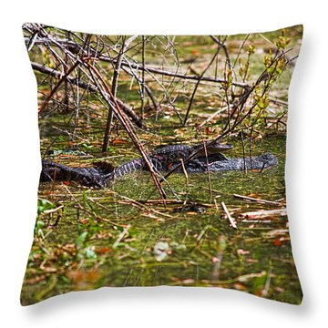 All Aboard Throw Pillow by Christopher Holmes