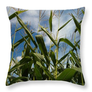 All About Corn Throw Pillow