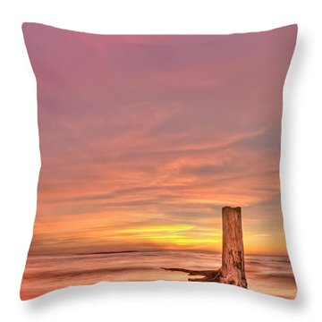 All Aglow Throw Pillow by Evelina Kremsdorf