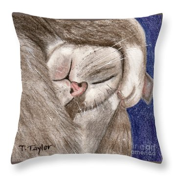All Curled Up Throw Pillow by Terry Taylor