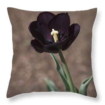 All Darkness And Light Throw Pillow