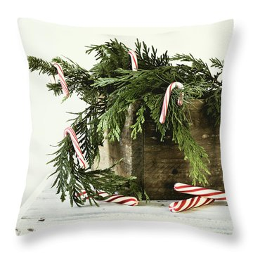 Throw Pillow featuring the photograph All Dressed Up by Kim Hojnacki