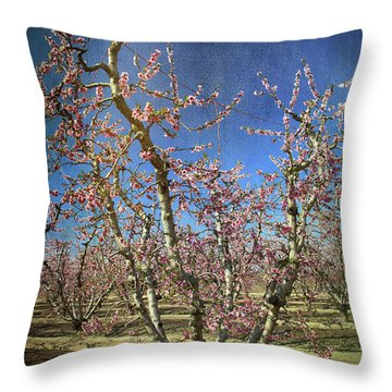 All Good Things Throw Pillow by Laurie Search