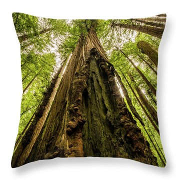 All Hail The King Throw Pillow