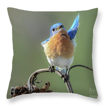 All In Favor Throw Pillow