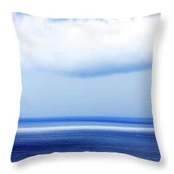 Throw Pillow featuring the photograph All Is Lost by John Rizzuto
