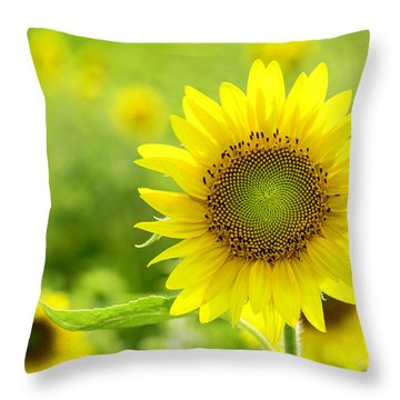 All Is Well With My Soul Throw Pillow