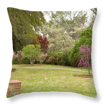 All Kinds Of Dogs Throw Pillow