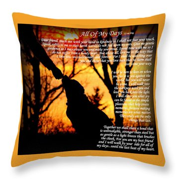 All Of My Days Version Three Throw Pillow