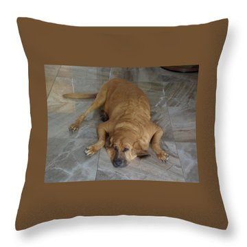 All Pooped Out Throw Pillow