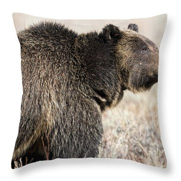 All Seems Beautiful Throw Pillow
