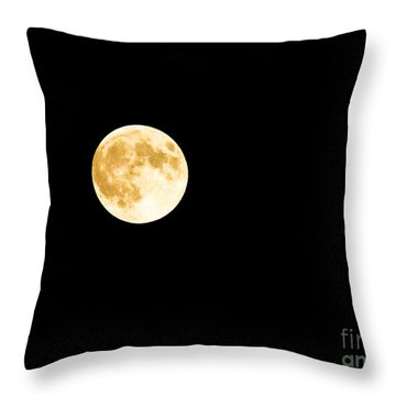 Throw Pillow featuring the photograph All That Glitters by Sandy Molinaro