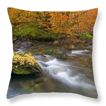 All That Is Gold Throw Pillow by Mike  Dawson