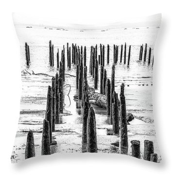 All That Is Left Throw Pillow by Joe Hudspeth
