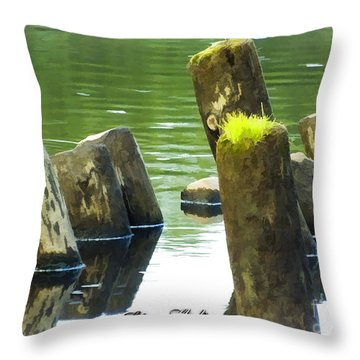 All That Remains Throw Pillow by Melissa Messick