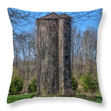 All Thats Left Throw Pillow