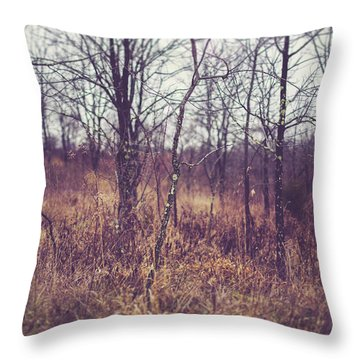Throw Pillow featuring the photograph All The While by Shane Holsclaw