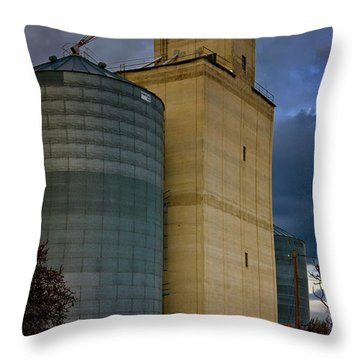 Throw Pillow featuring the photograph All Things by Albert Seger