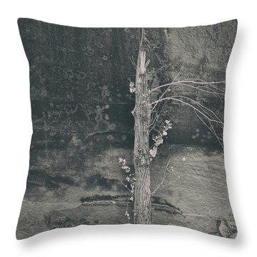 All Things Shall Pass Throw Pillow