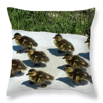All Together Now Throw Pillow by Beth Saffer