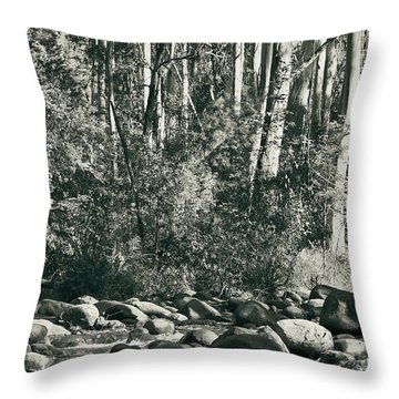 Throw Pillow featuring the photograph All Was Tranquil by Linda Lees