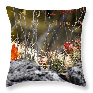 All We Need Throw Pillow by David Norman