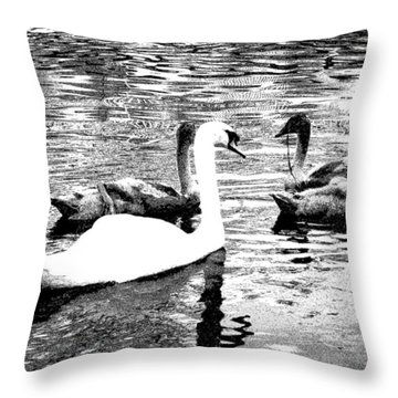 Throw Pillow featuring the photograph All You Need Is Love  by Fine Art By Andrew David