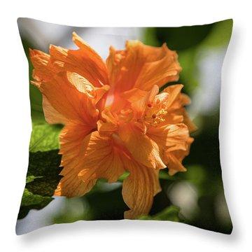 Allan Gardens Orange Throw Pillow
